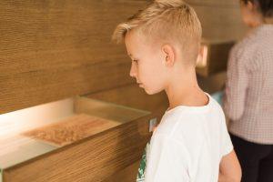 Chłopiec w białej bluzce z krótkim rękawem, z jasnymi włosami ogląda eksponat w szkalnej gablocie